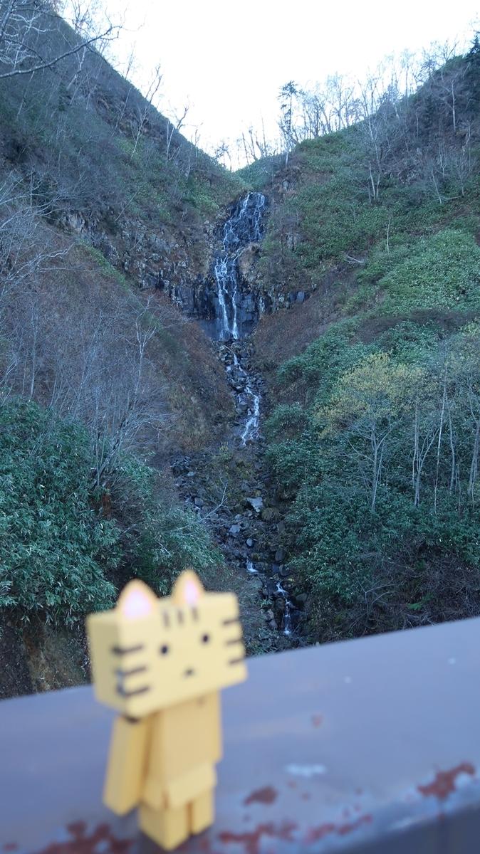 f:id:shirokumapanda:20190214024629j:plain