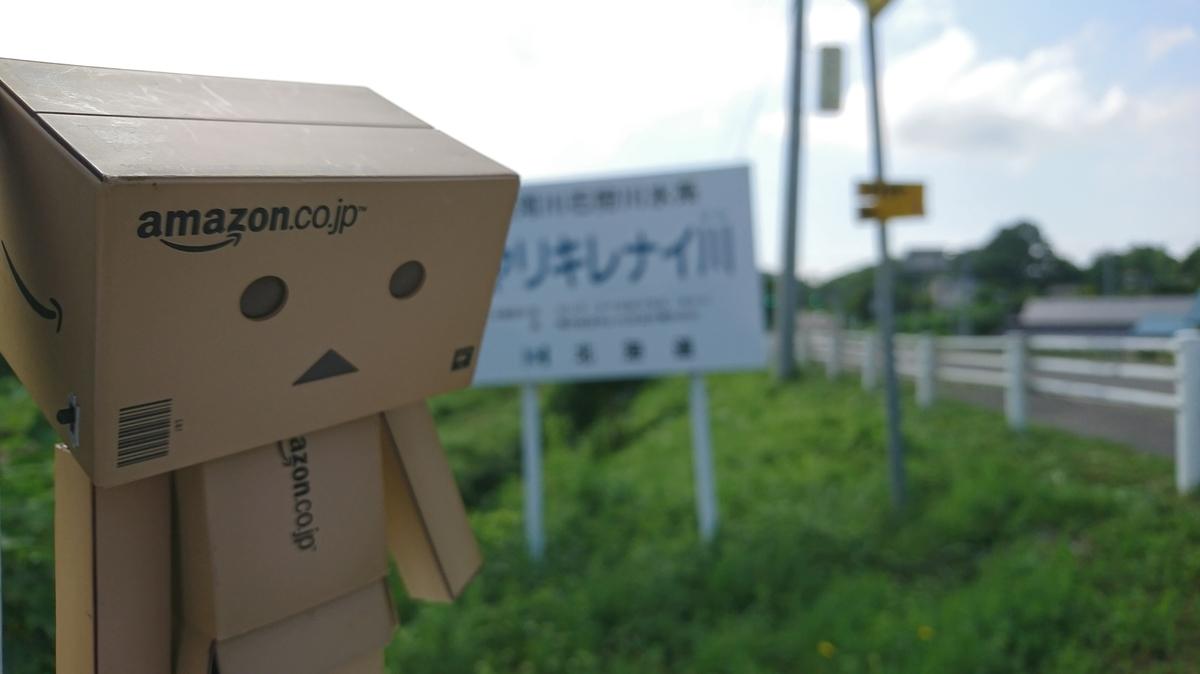 f:id:shirokumapanda:20190221014409j:plain