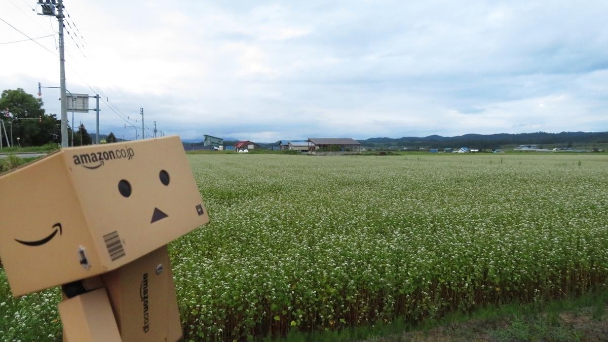 f:id:shirokumapanda:20190224233556j:plain