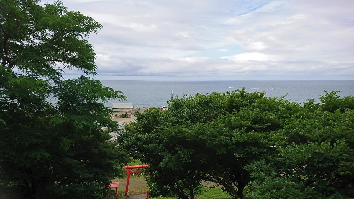 f:id:shirokumapanda:20190308225629j:plain