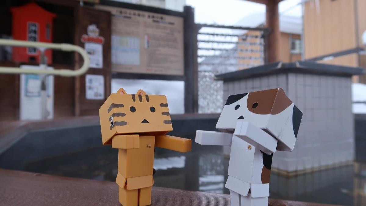 f:id:shirokumapanda:20190326224808j:plain