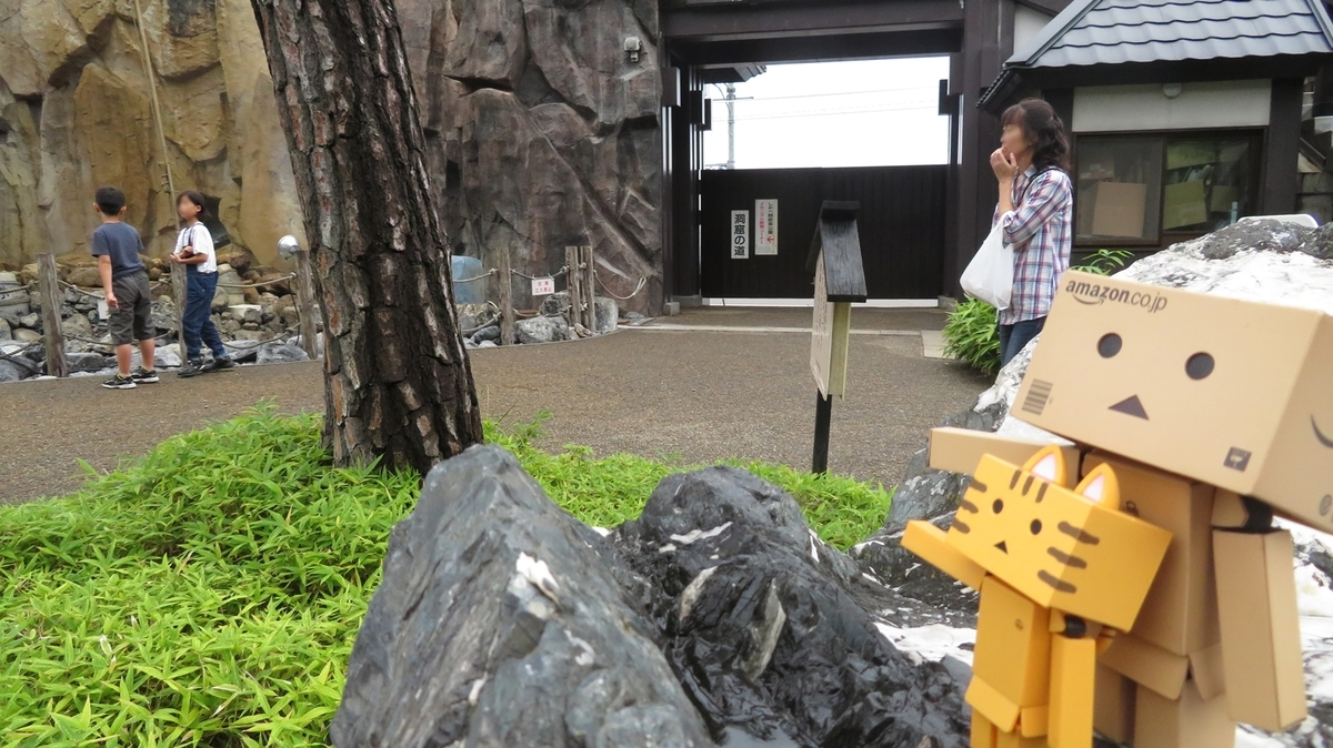 f:id:shirokumapanda:20190402000740j:plain