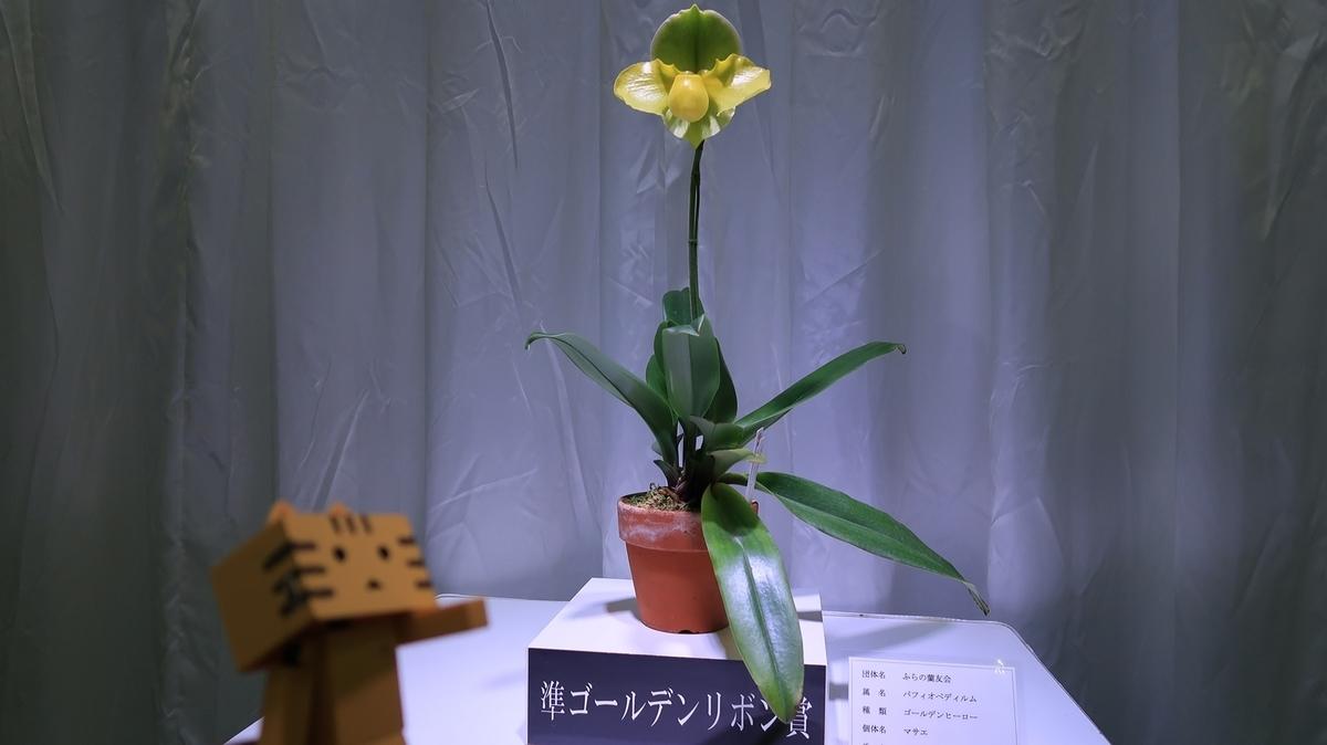 f:id:shirokumapanda:20190418004644j:plain