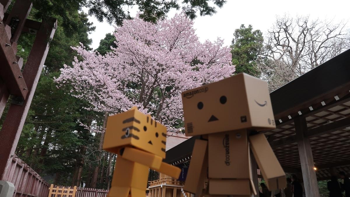 f:id:shirokumapanda:20190502012442j:plain