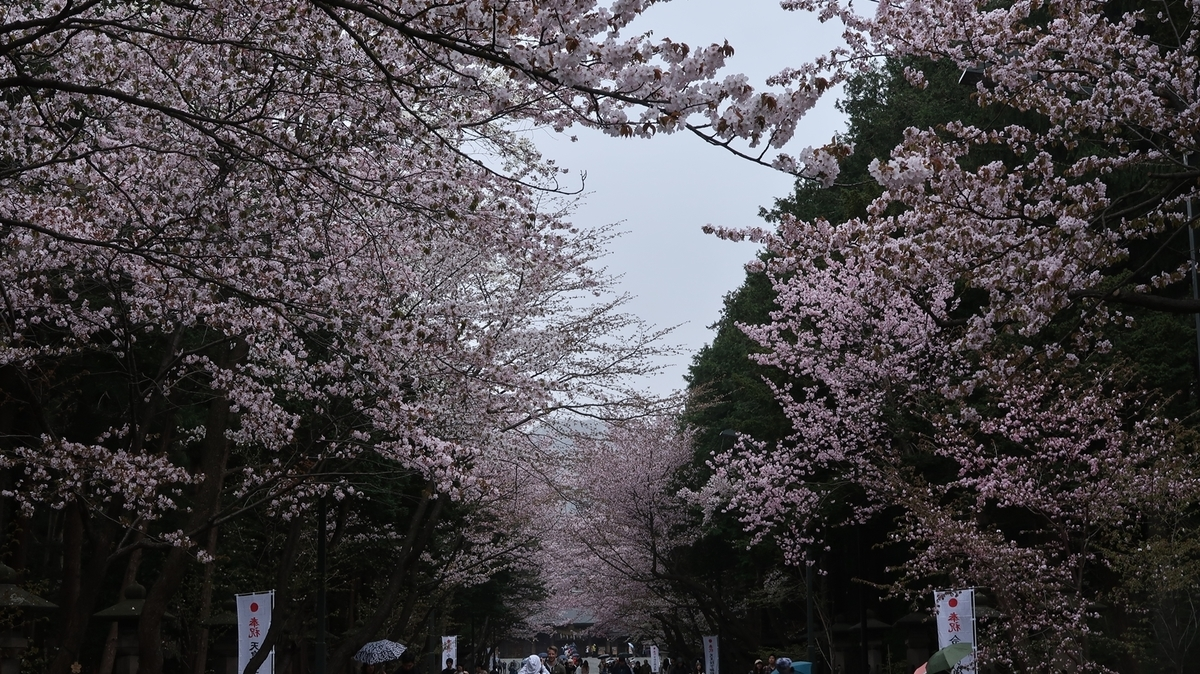 f:id:shirokumapanda:20190502013148j:plain
