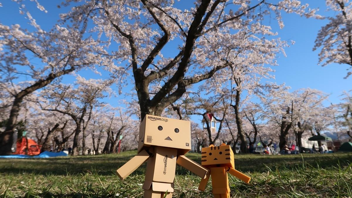 f:id:shirokumapanda:20190515025450j:plain