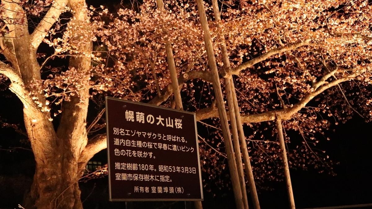 f:id:shirokumapanda:20190530234321j:plain