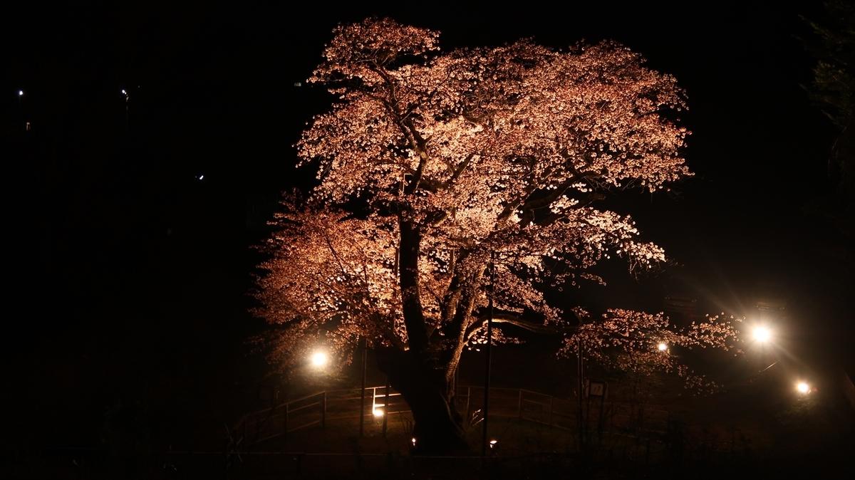 f:id:shirokumapanda:20190530234330j:plain