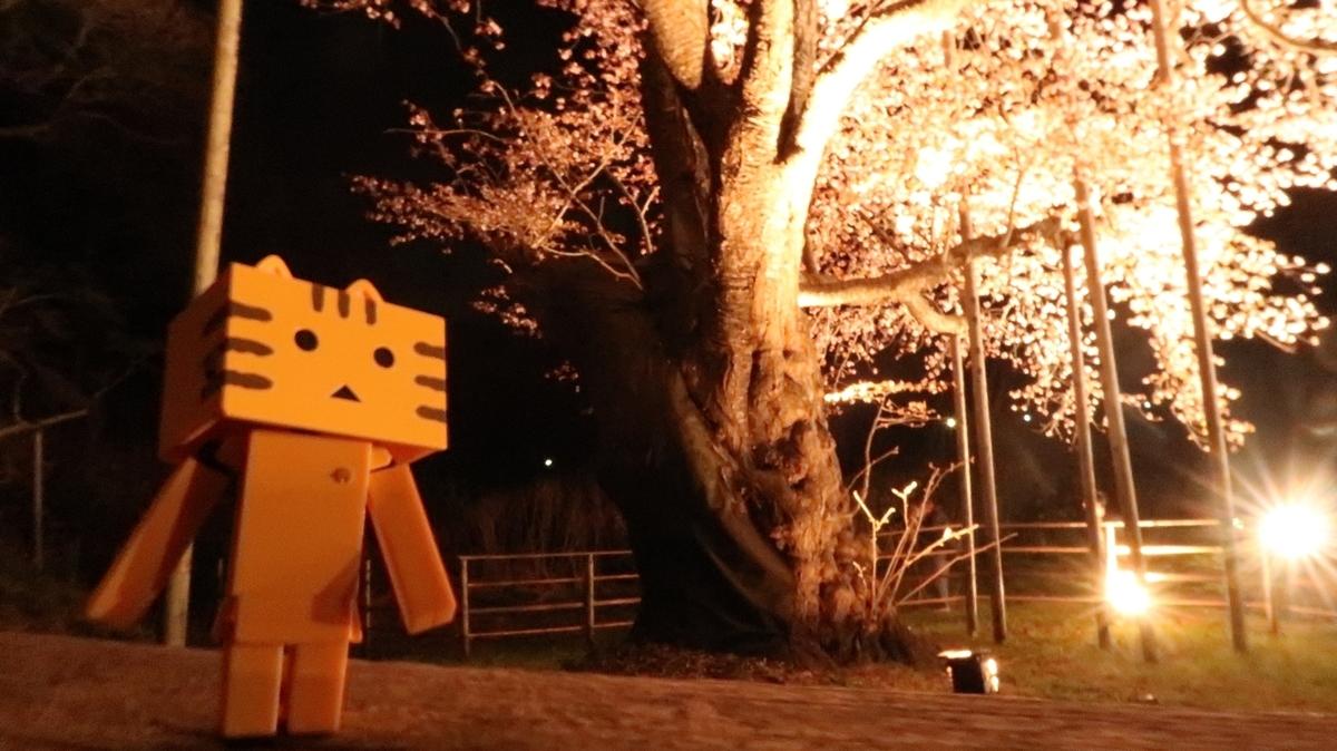 f:id:shirokumapanda:20190530234437j:plain