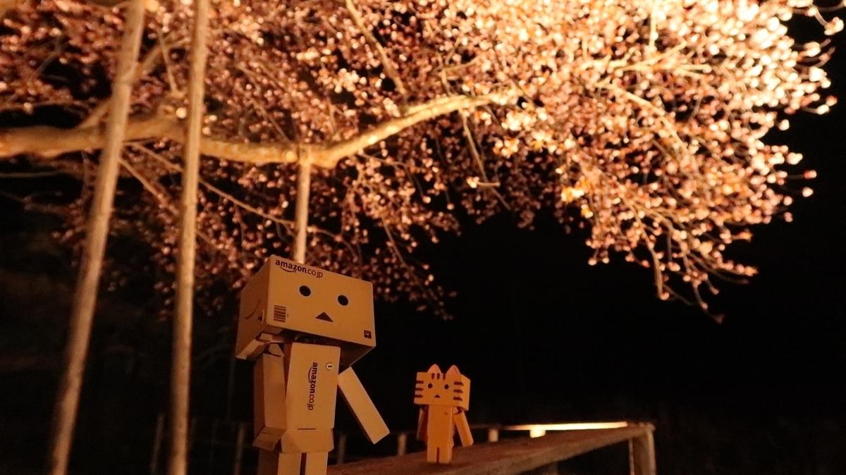 f:id:shirokumapanda:20190530234558j:plain