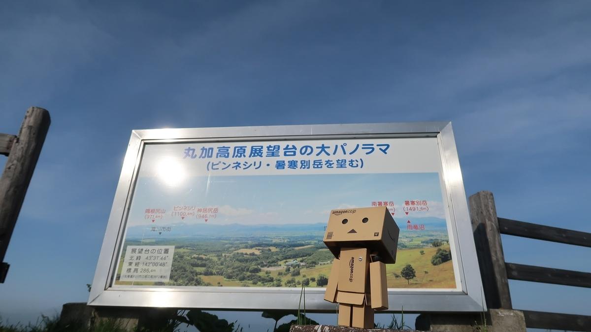 f:id:shirokumapanda:20190604235257j:plain