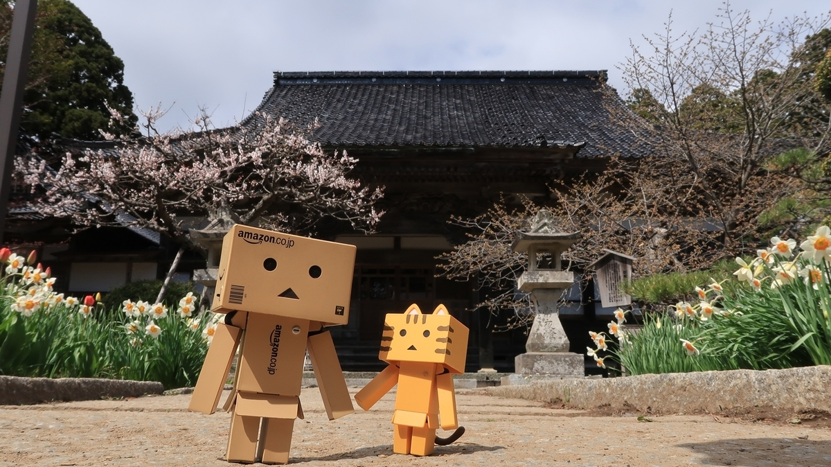 f:id:shirokumapanda:20190607224126j:plain