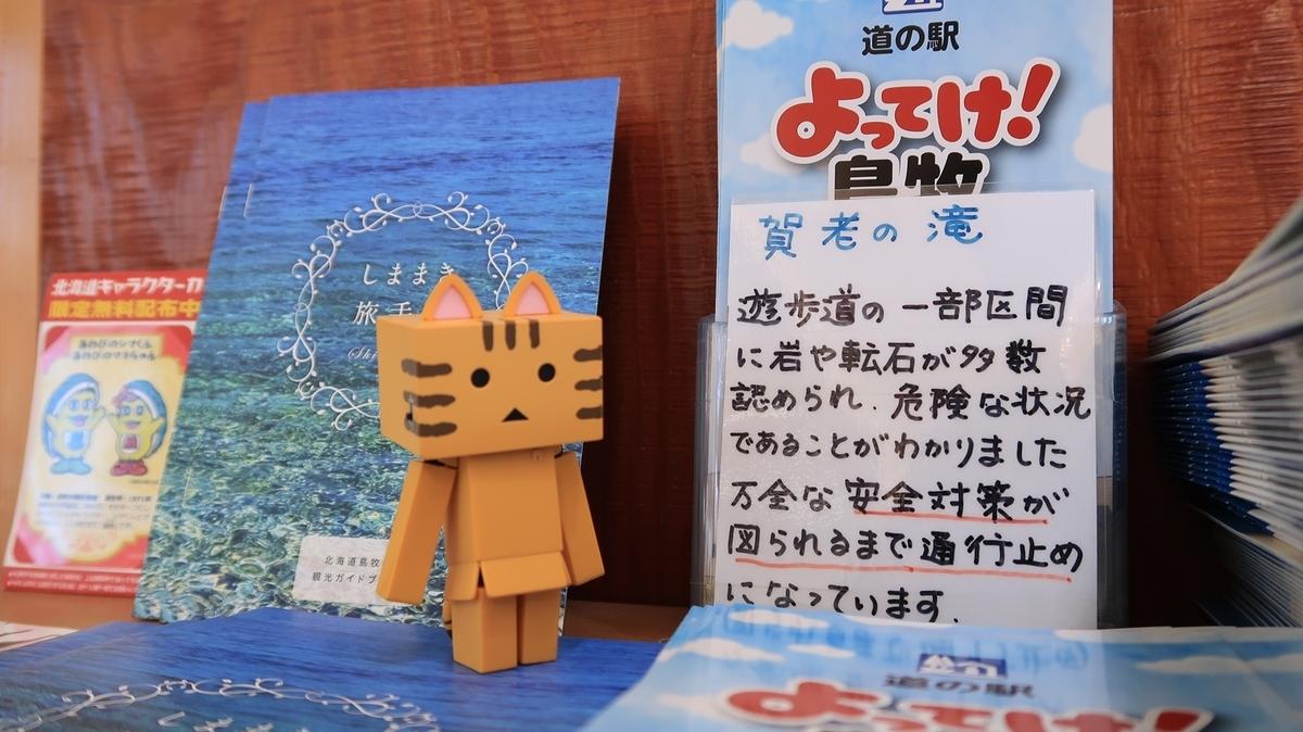 f:id:shirokumapanda:20190627235903j:plain