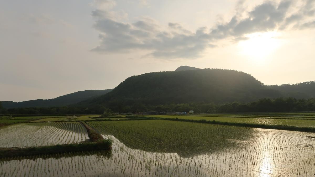 f:id:shirokumapanda:20190704012615j:plain