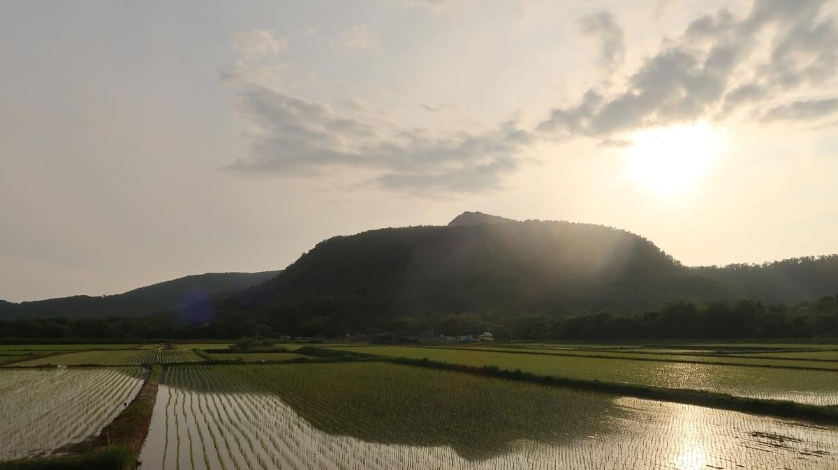 f:id:shirokumapanda:20190704012630j:plain