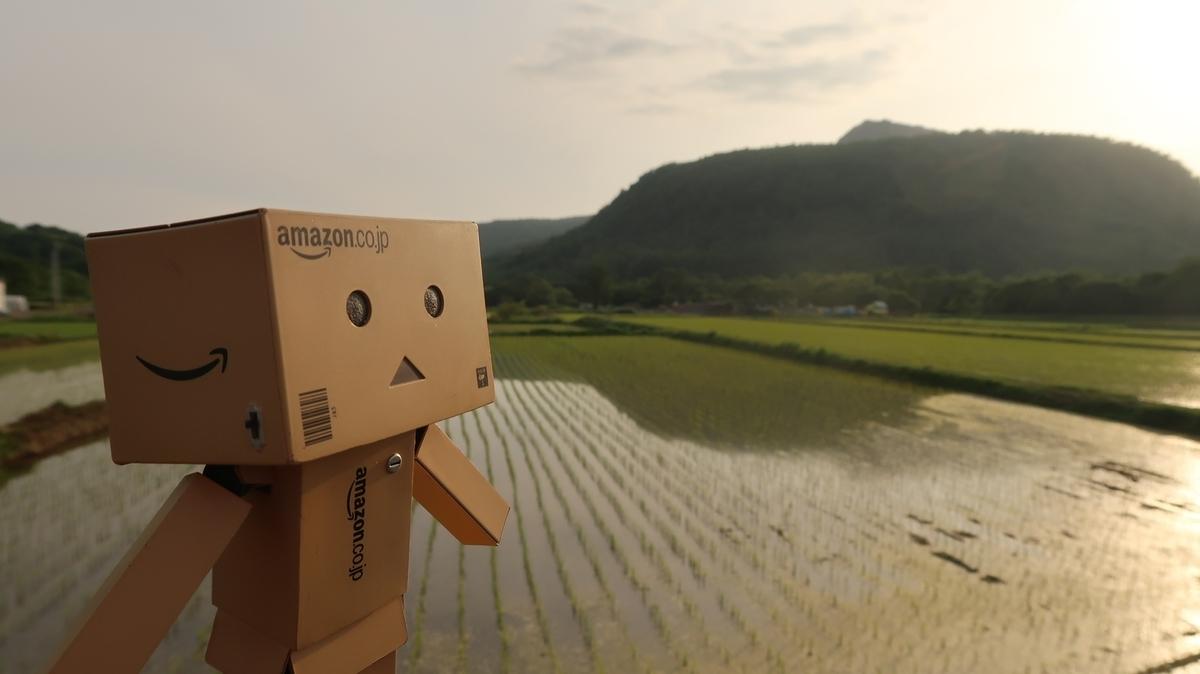 f:id:shirokumapanda:20190704012635j:plain