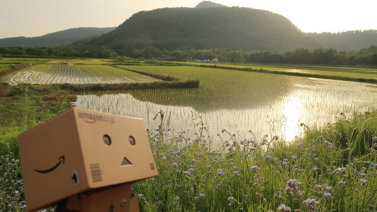 f:id:shirokumapanda:20190704012641j:plain