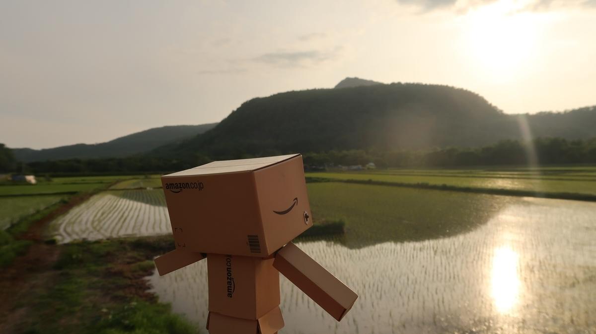 f:id:shirokumapanda:20190704012646j:plain