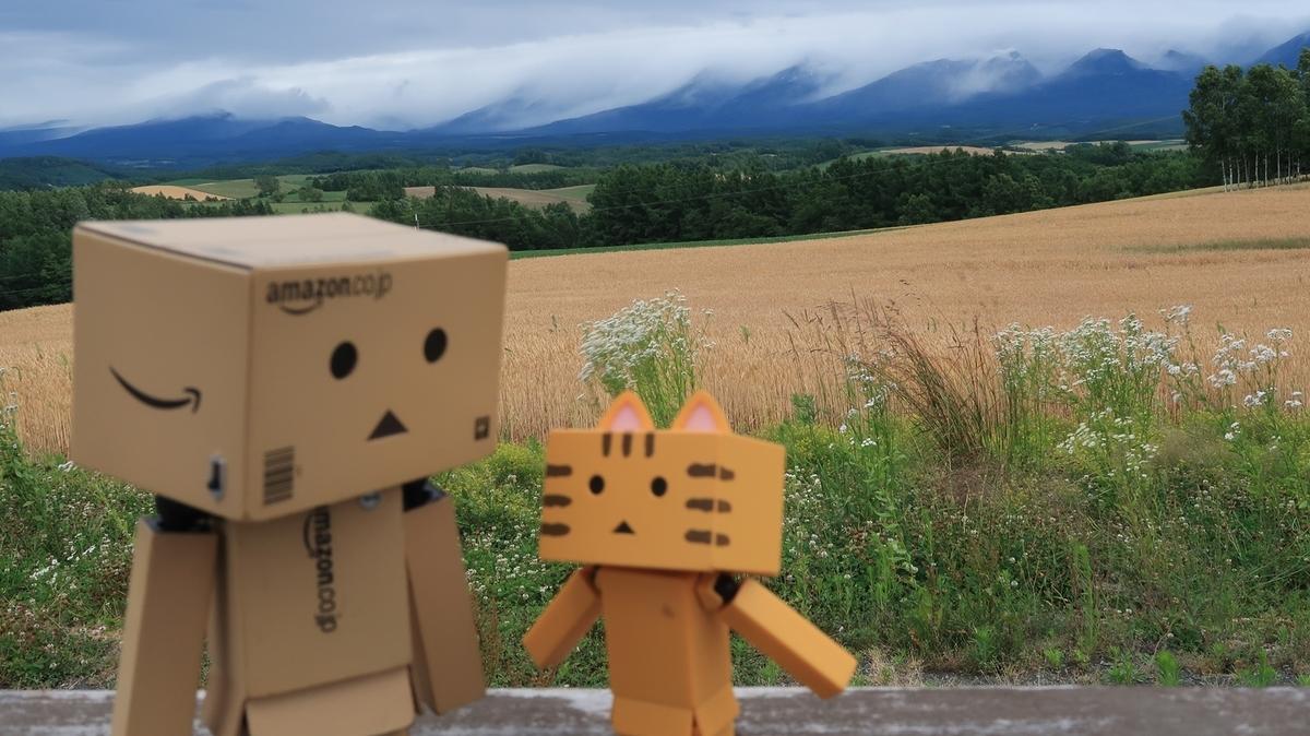 f:id:shirokumapanda:20190811010225j:plain