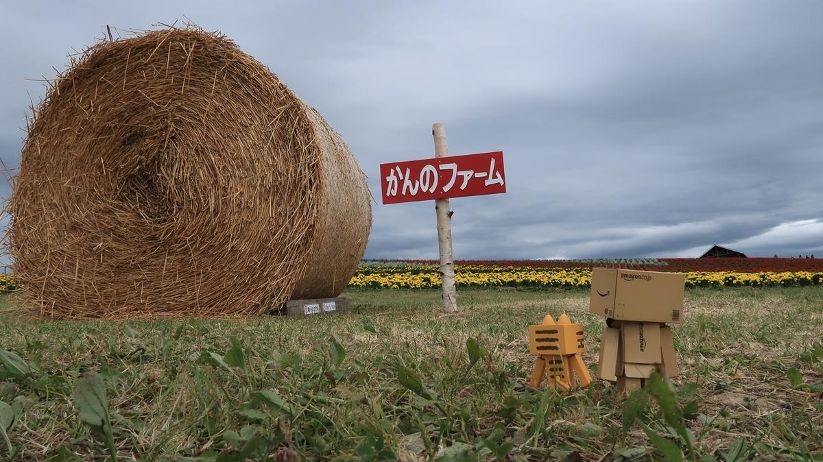 f:id:shirokumapanda:20190821233623j:plain