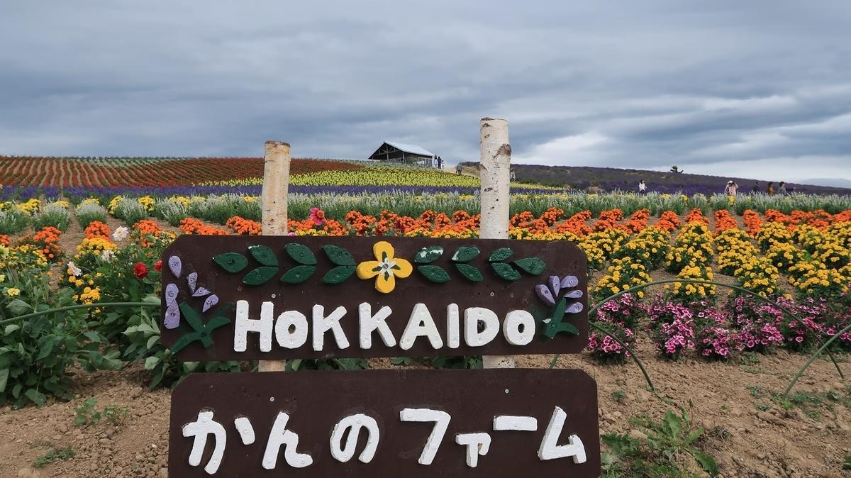 f:id:shirokumapanda:20190823003429j:plain