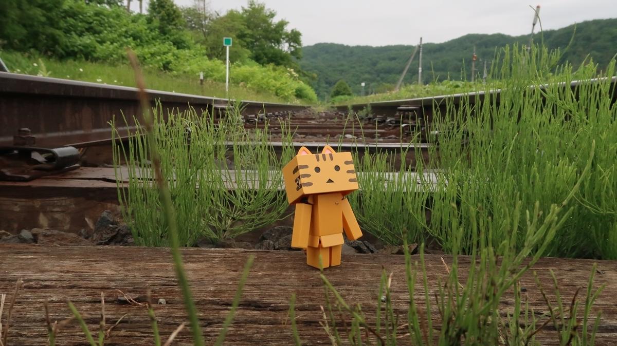 f:id:shirokumapanda:20190830033356j:plain