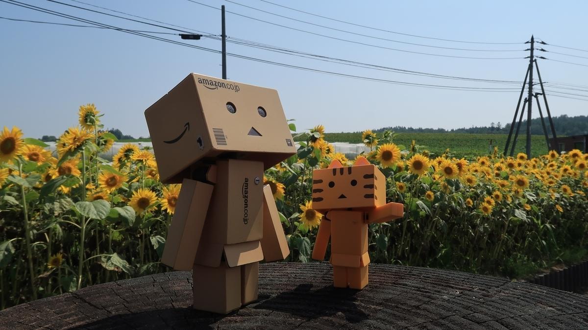 f:id:shirokumapanda:20190904232958j:plain