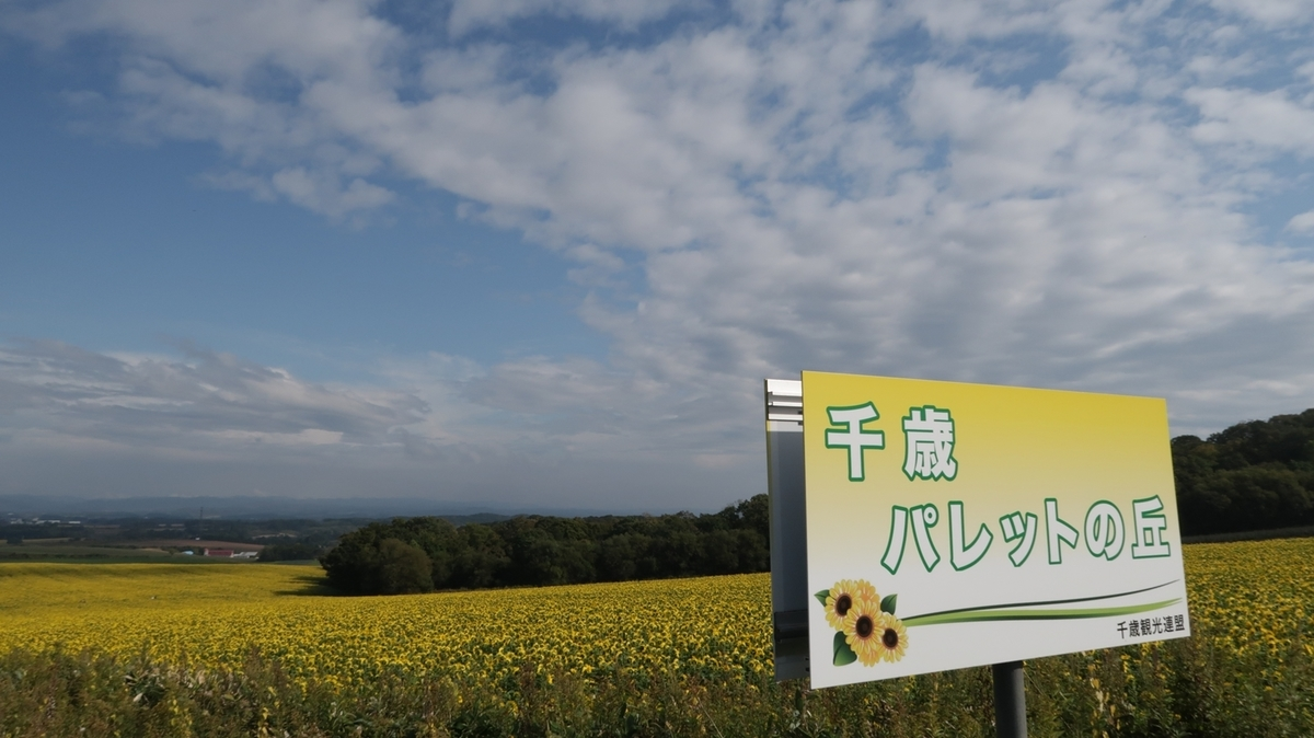 f:id:shirokumapanda:20191116231615j:plain