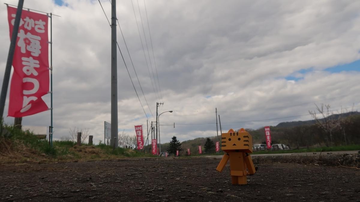 f:id:shirokumapanda:20191118221503j:plain