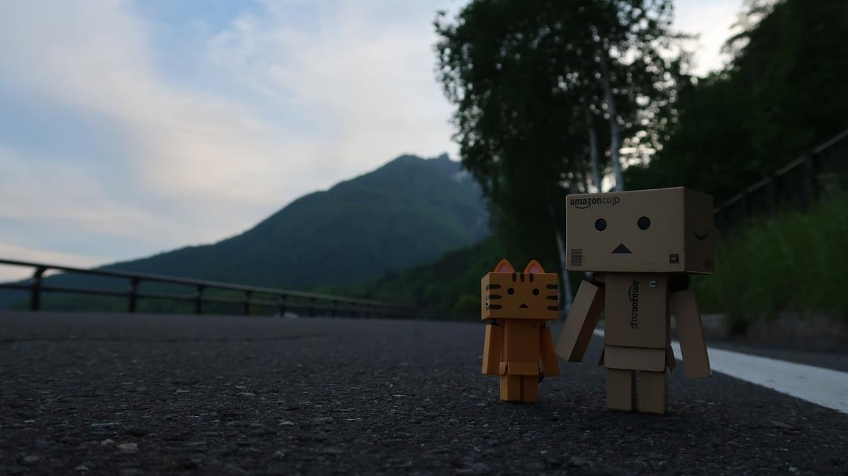 f:id:shirokumapanda:20191124224735j:plain
