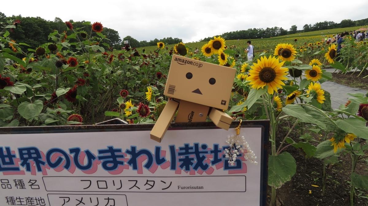 f:id:shirokumapanda:20191226011353j:plain