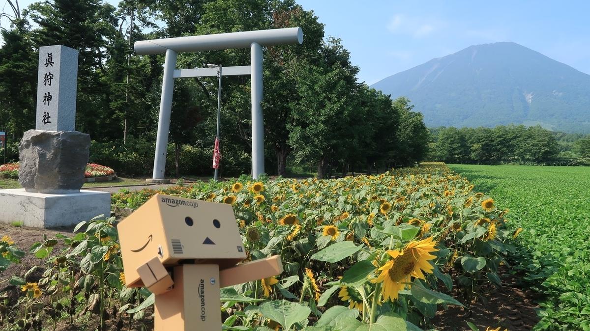 f:id:shirokumapanda:20200112195052j:plain