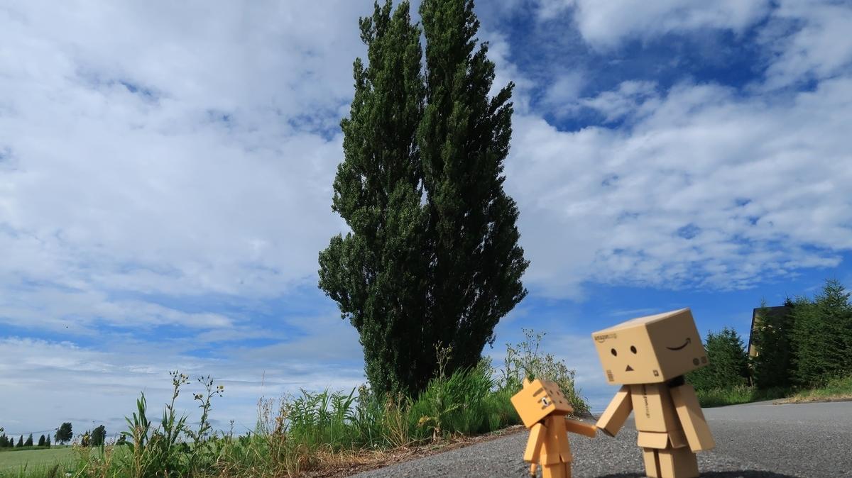 f:id:shirokumapanda:20200117225801j:plain