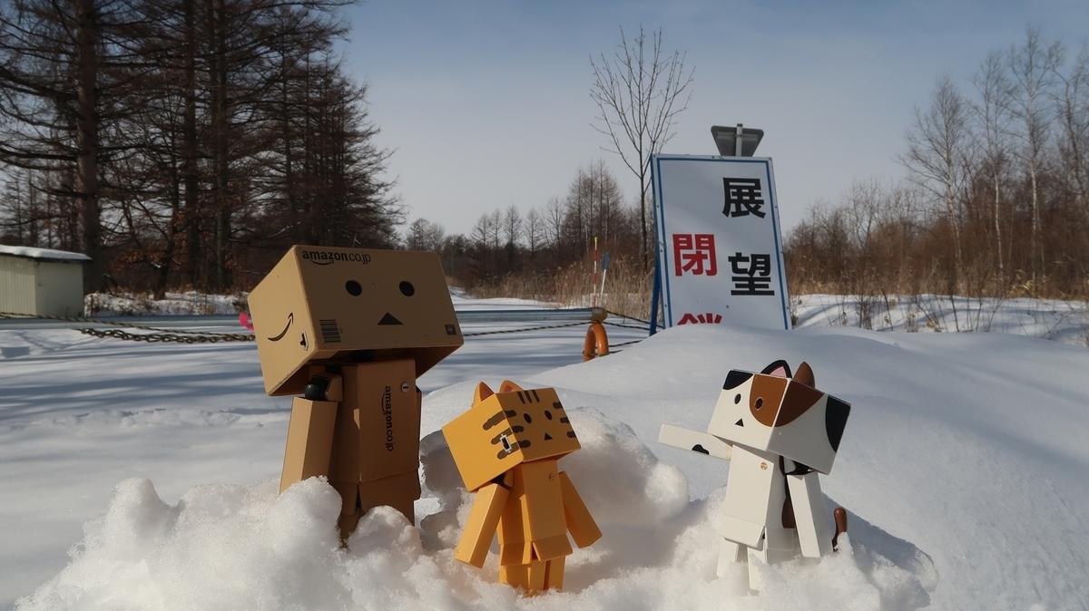 f:id:shirokumapanda:20200223222737j:plain
