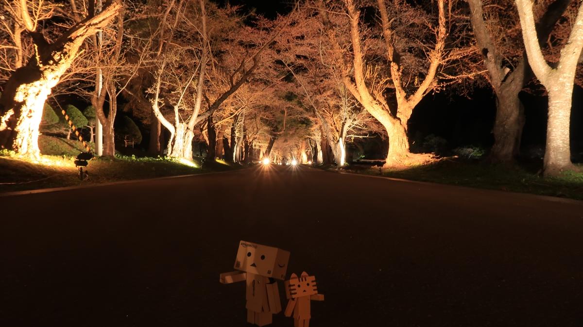 f:id:shirokumapanda:20200410014029j:plain