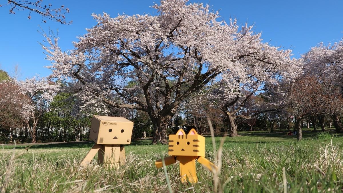 f:id:shirokumapanda:20200502194334j:plain