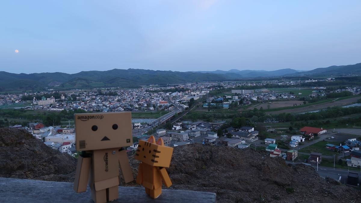 f:id:shirokumapanda:20200502194503j:plain