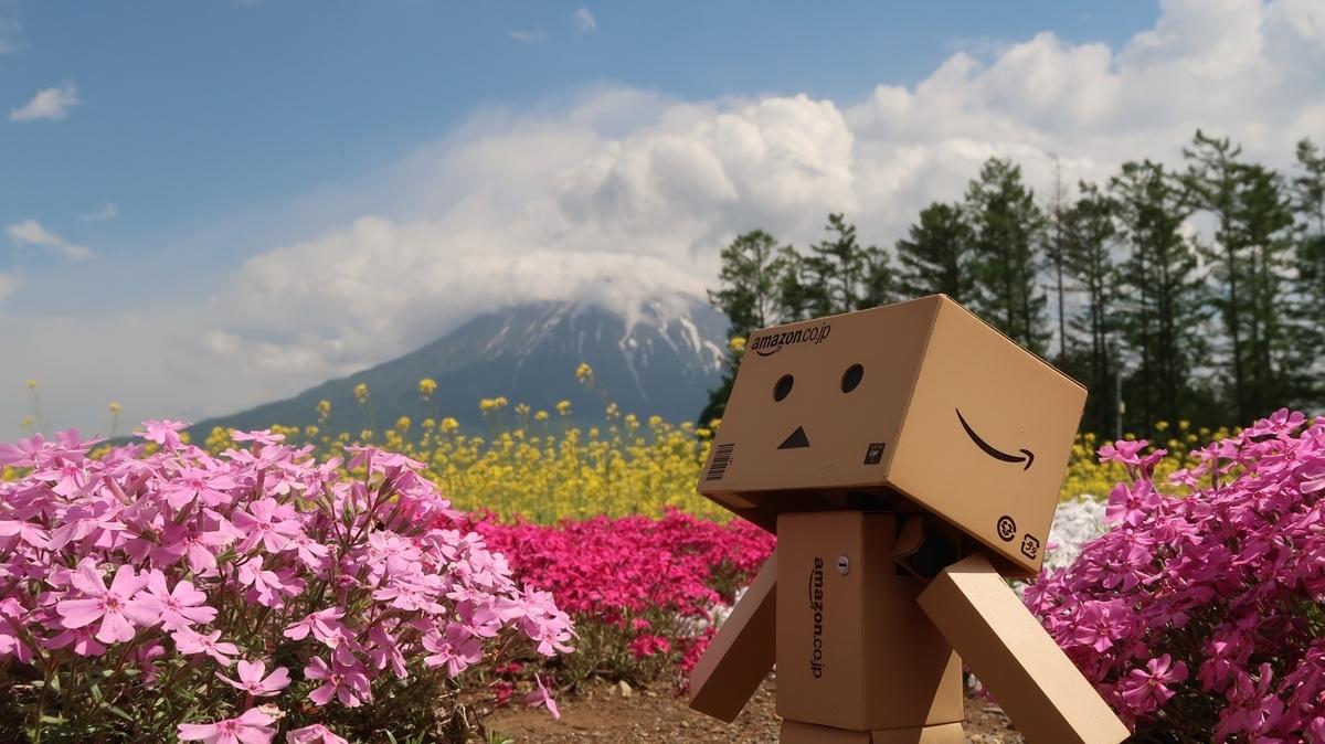 f:id:shirokumapanda:20200502194627j:plain