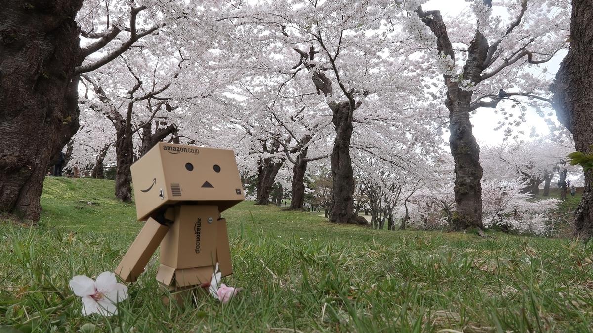 f:id:shirokumapanda:20200502194653j:plain