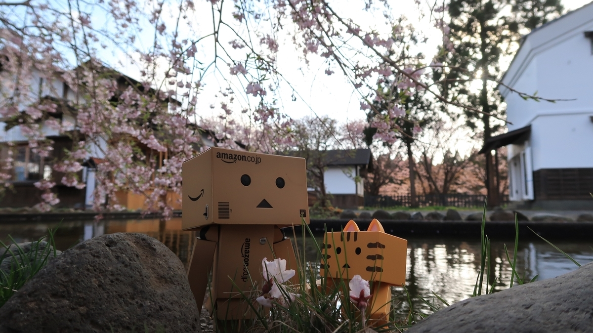 f:id:shirokumapanda:20200505001011j:plain