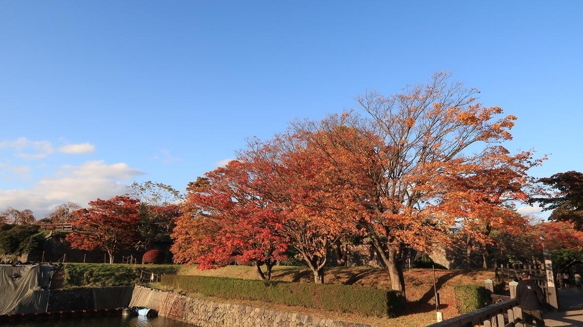 f:id:shirokumapanda:20200505012626j:plain