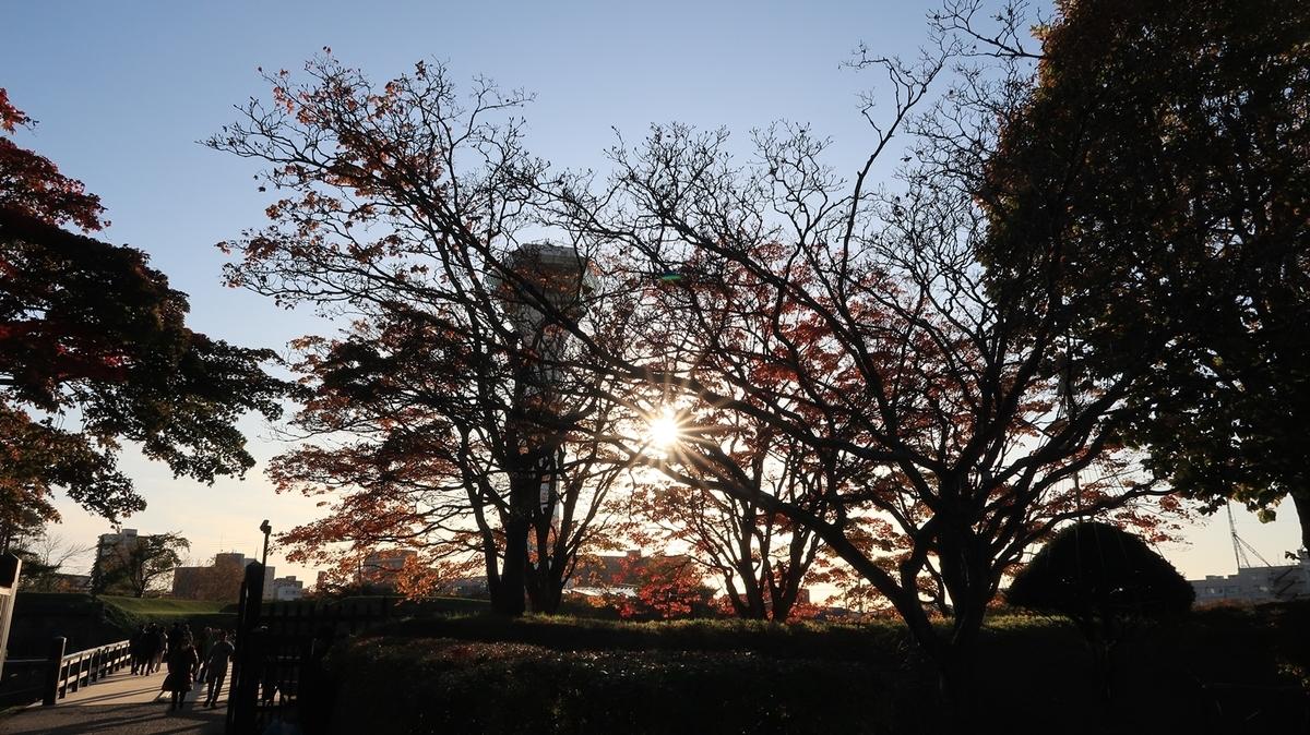 f:id:shirokumapanda:20200505012659j:plain