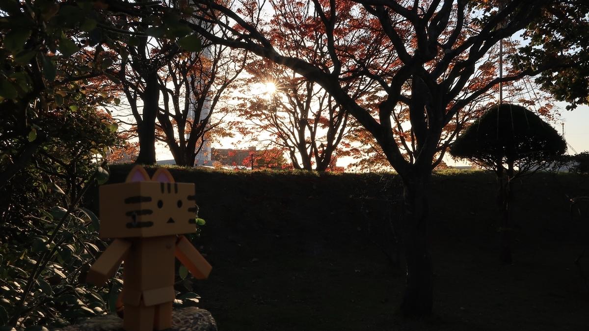 f:id:shirokumapanda:20200505012712j:plain