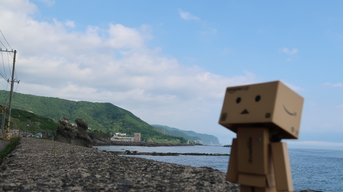 f:id:shirokumapanda:20200508025155j:plain