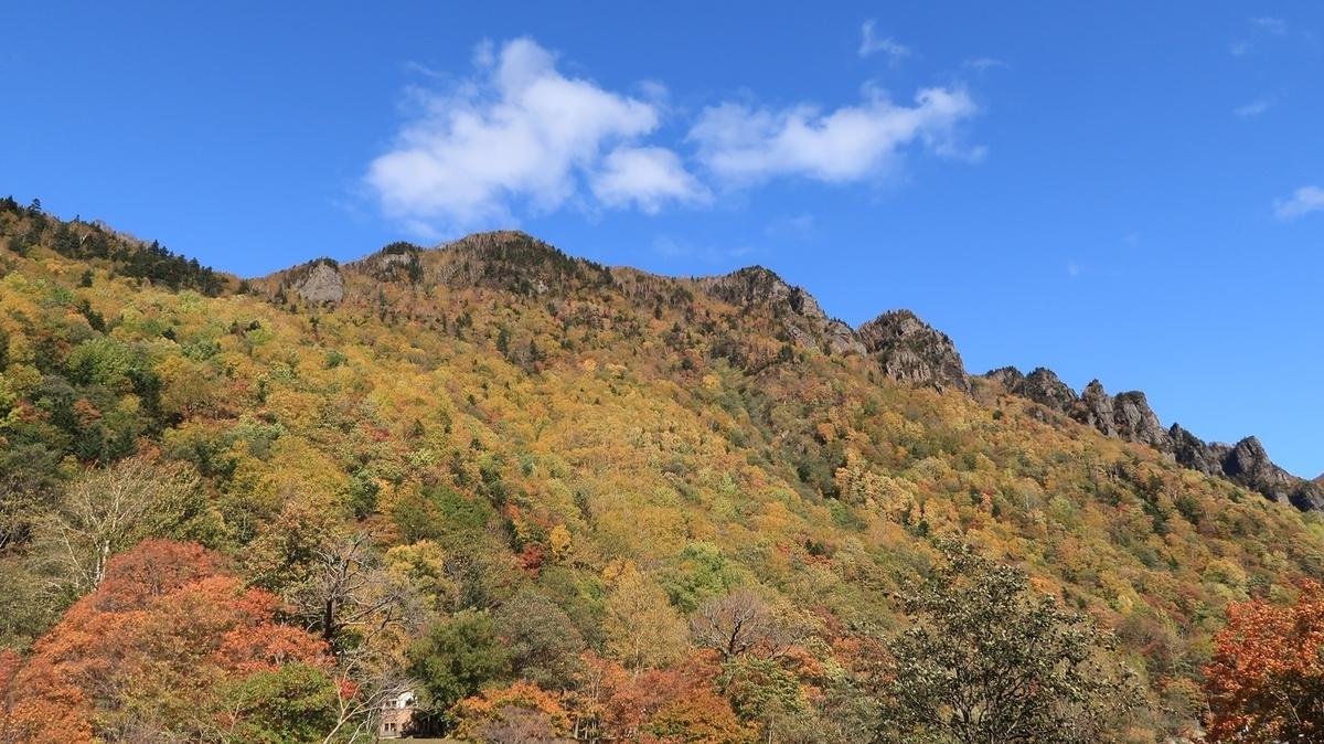 f:id:shirokumapanda:20200510003145j:plain