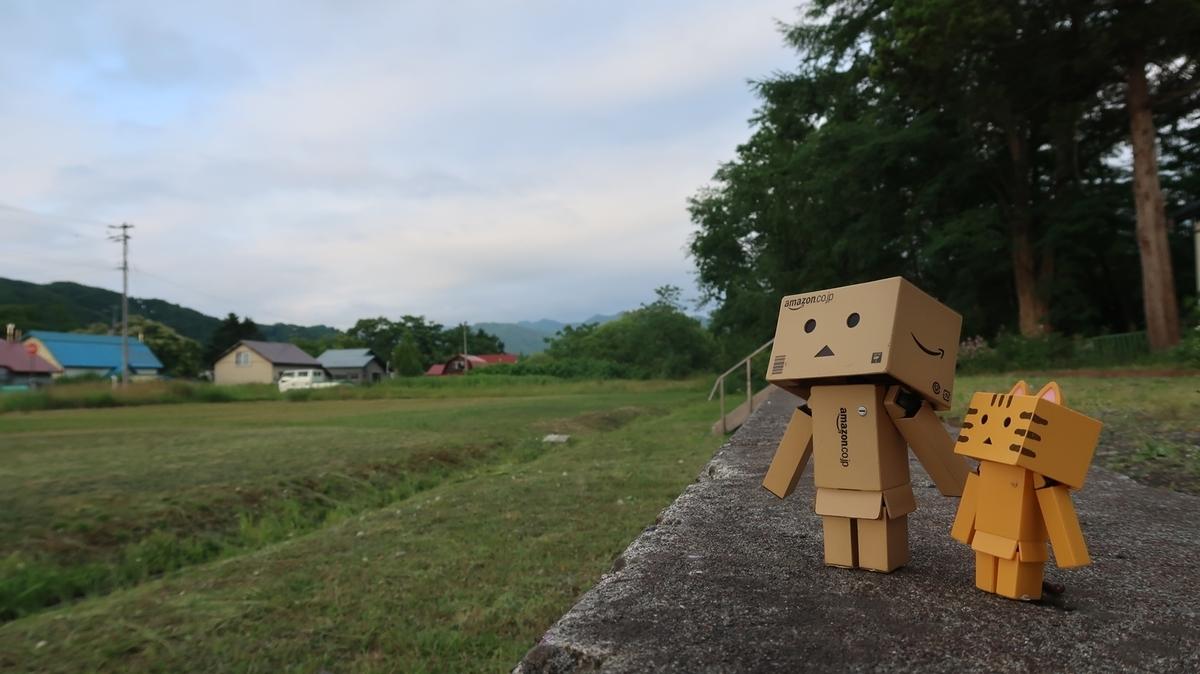 f:id:shirokumapanda:20200520011110j:plain