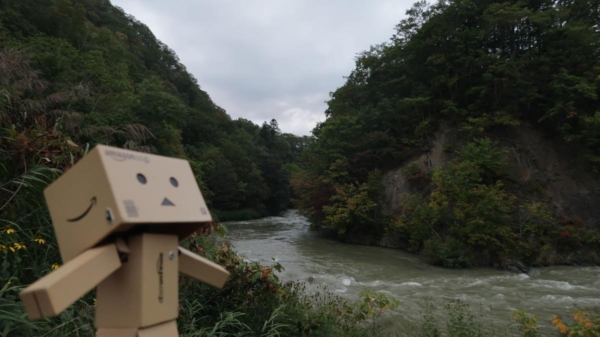 f:id:shirokumapanda:20200523004735j:plain