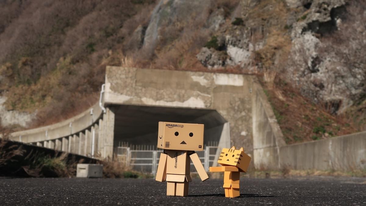 f:id:shirokumapanda:20200525000057j:plain