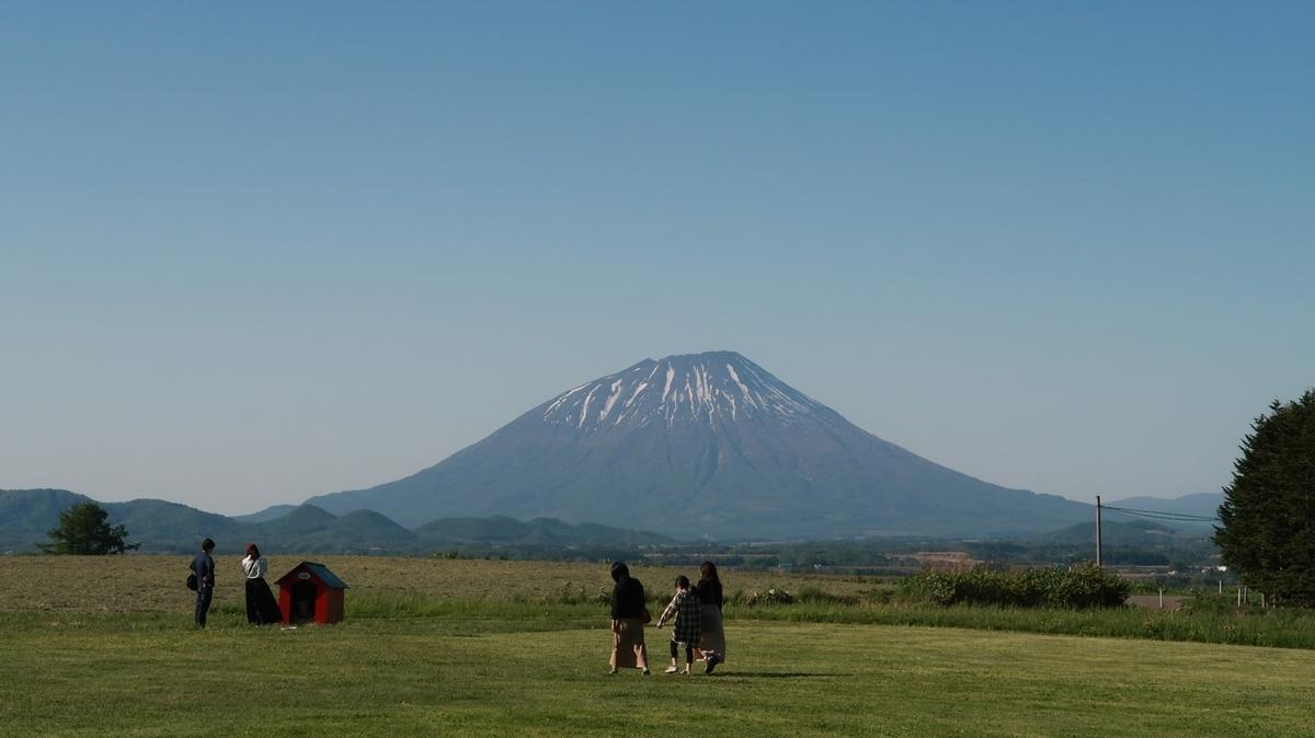 f:id:shirokumapanda:20200531233934j:plain