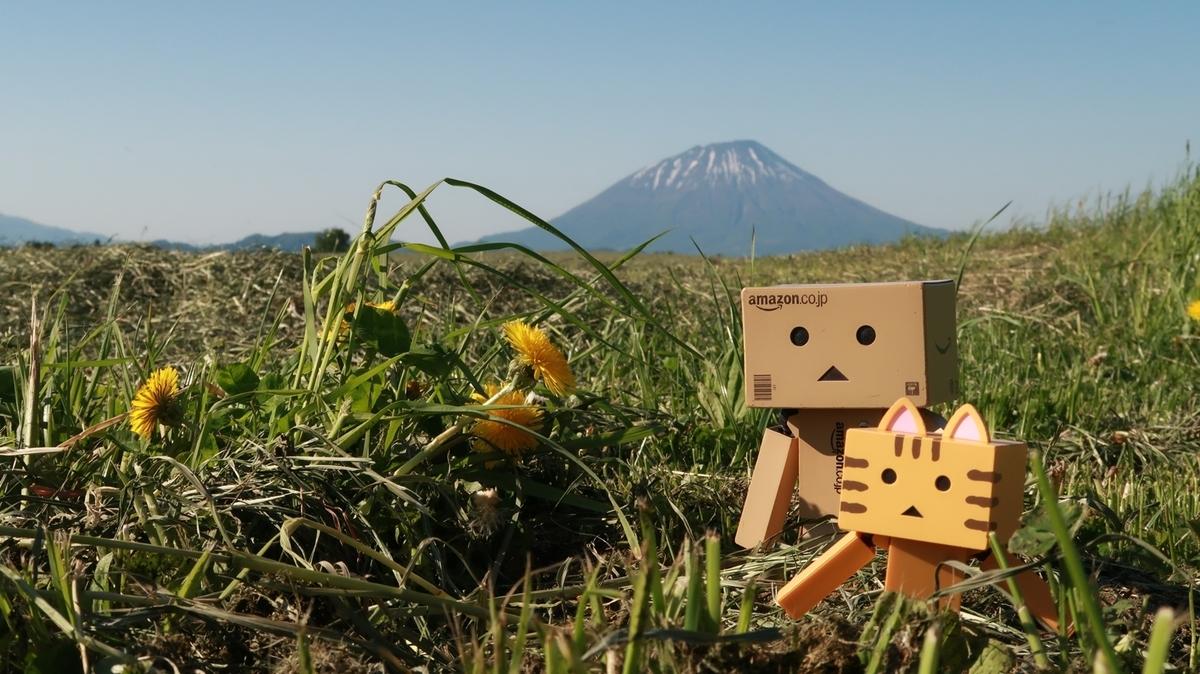 f:id:shirokumapanda:20200531233945j:plain